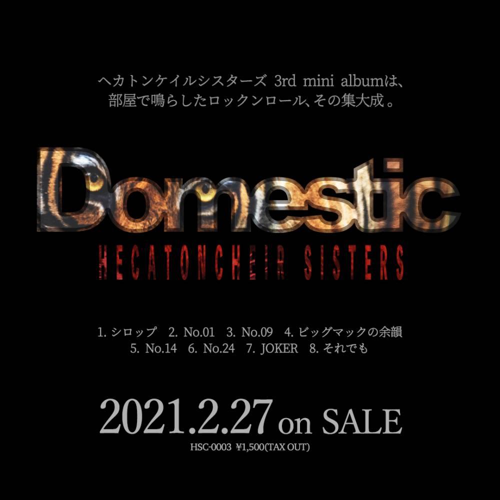 3rd mini album Domestic